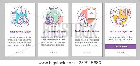 Human Anatomy Onboarding Mobile App Page Screen With Concepts. Respiratory And Cardiovascular System