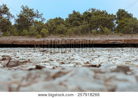 Vintage Stone Board Empty Table In Blur Front Of Coniferous Forest On Background Of Blue Sky.
