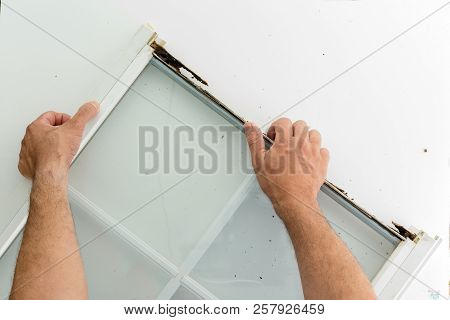 Homeowner Replacing A Damaged Window Frame In Preparation For Winter Holding The Removed Window Over