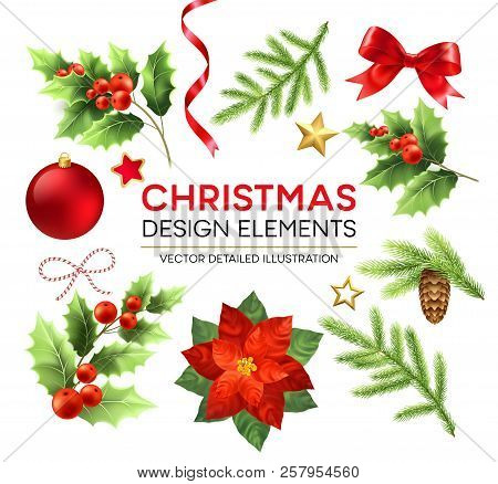 Christmas Design Elements Set. Xmas Decorations And Objects. Poinsettia, Fir Branch, Mistletoe Berri