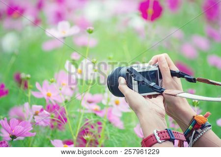 Travel Of Photographer Woman,take Photo With Mirrorless Camera.people Side View,young Traveler Girl
