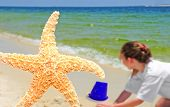 Pretty starfish and child playing on beach poster