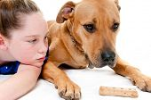 girl and dog looking at bone poster