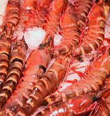 many red crustacean for sale at fishmongers poster