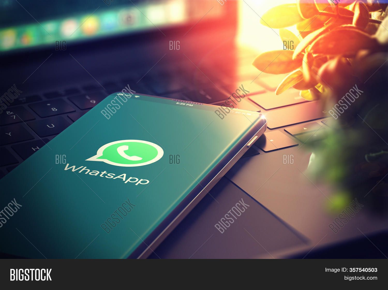 Kyiv, Ukraine-january, 2020: Whatsapp On Smartphone Screen. Closeup. Whatsapp Is Most Popular Social
