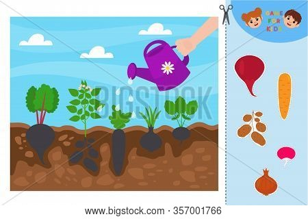 Game For Preschool Children. Find The Correct Shadow Educational Mini-game For Children. Garden: Pot