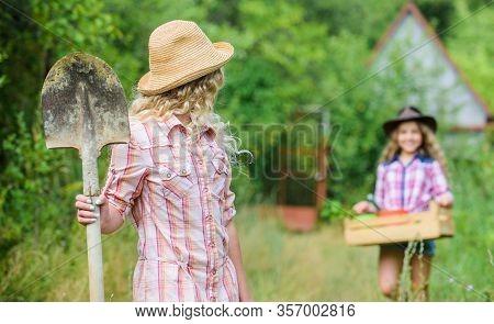 Gardening Basics. Gardening Teaching Life Cycle Process. Girls With Gardening Tools. Summer At Count