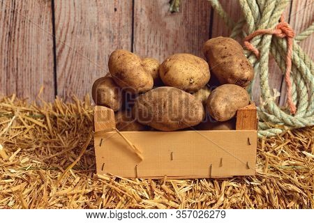 Closeup Russet Potatoes In Wood Box On Hay Bale In A Barn