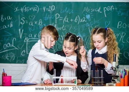 Study Of Liquid States. Group School Pupils With Test Tubes Study Chemical Liquids. School Laborator