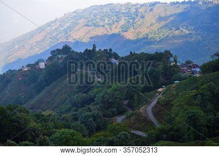 A Road Leading Through A Tea Farm In Darjeeling , West Bengal, India