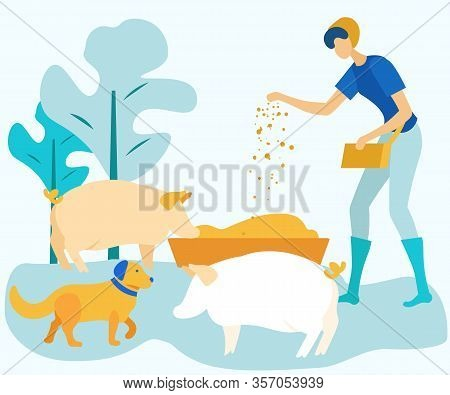 Woman Feeds Cattle On Farm. Vector Illustration. People On Farm. Natural Products. Farm Products. An