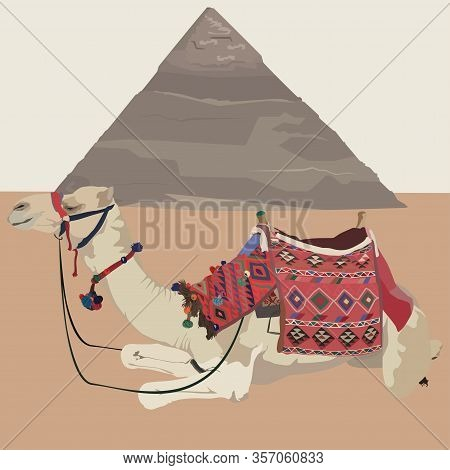 Egyptian Pyramid Of Cheops And Arabian One-humped Camel Dromedary With Bridle And Saddle, Vector Ill