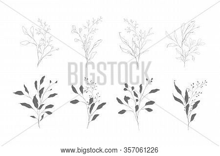 Botanical Line Art Silhouette Leaves Hand Drawn Pencil Sketches Isolated On White Background. Fine A