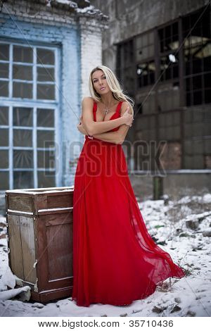 The Lady In A Red Dress On Snow