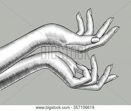 Female hands stretching palm up. Vintage engraving stylized drawing