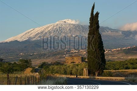 Etna Mount and cypress tree scenic view at the evening from a rural area of  south-west of Sicily