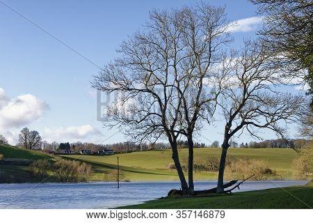 Trees By River Wye In Flood Below Kerne Bridge, Herefordshire, Uk
