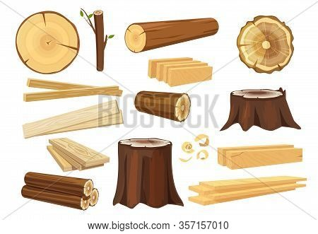 Wooden Industry. Lumber Trunks Stacking Log Vector Forestry Objects Stump And Branches Collection. I