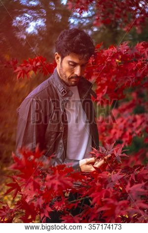 A Young Entrepreneurial Businessman In An Autumn Session Among Red Leaves