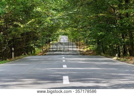 Empty Road With Broken Line In The Middle Of Deciduous Forest, Green Trees Alley, Sunny Summer Day,