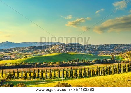 Sunset Landscape In Maremma Countryside. Rolling Hills And Cypress Trees. Casale Marittimo. Tuscany,
