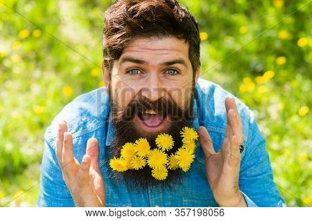 Pollen Allergy. Taking Antihistamines Makes Life Easier For Allergy Sufferers. Man With Yellow Dande