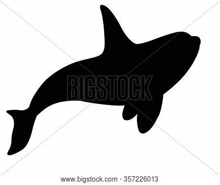 Killer Whale - Black Vector Silhouette For Pictogram Or Logo. Orc Killer Whale Is A Silhouette Of Th