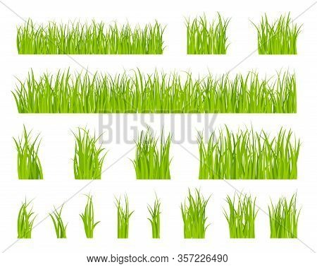 Green Grass. Bio Lawn Pattern, Herbal Summer Border. Isolated Fields, Spring Season Horizontal Garde