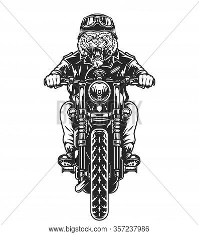 Vintage Ferocious Tiger Head Biker Riding Motorcycle In Monochrome Style Isolated Vector Illustratio