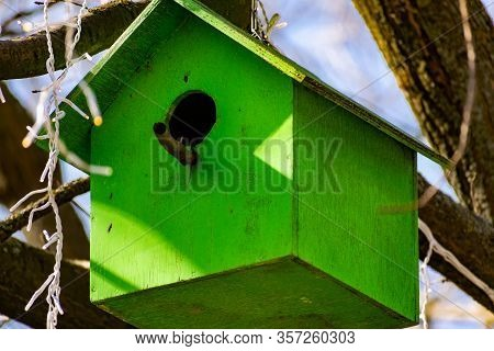 A Wooden Birdhouse, Built With Your Own Hands And Painted With Colored Paint, Hangs Attached To A Tr