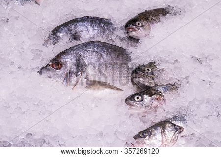 Chilled Saltwater Fish On Display In A Supermarket In The Ice