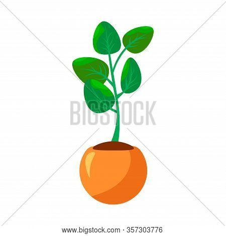 Cartoon Green House Plants In Pots Set. Leaf And Flowers Icon. Flowerpot Isolated Objects, Houseplan