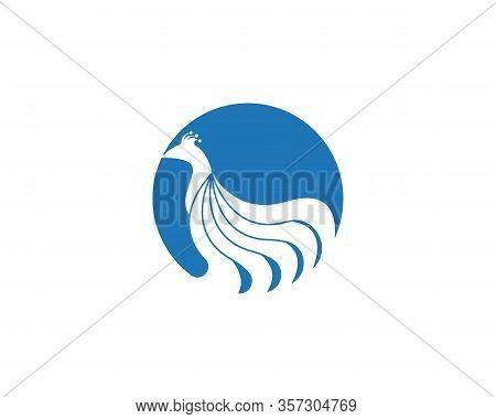 Peacock Icon And Symbol Logo Vector Illustration
