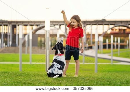 Lovely Young Girl In Red T-shirt With A Hunting Dog The Walk In The Green Grass On A Sunny Lawn. Chi