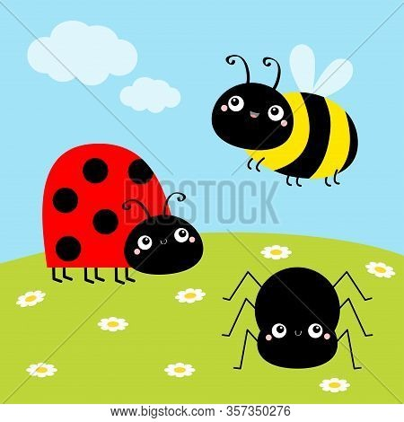 Bee Bumblebee, Spider, Ladybug Ladybird, Lady Bug. Insect Set. Green Grass Daisy Meadow, Sky With Cl