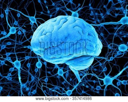Digital Illustration Of Human Brain, Blue Brain And Neurons, Active Brain, Iq Test, Model