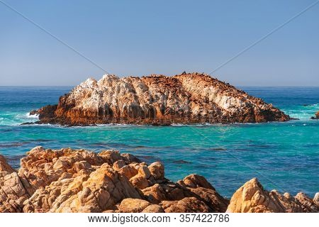 Beautiful Sea View Of Seal Rock Beach Witn Sea Lions On The Seal Rock (bright Colours) Greek Beach,