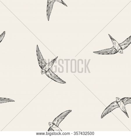 Vintage Pattern With Little Swift Birds. Monochrome Vector Background In Doodle Asian Style.