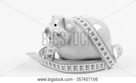 Measure Costs. Piggy Bank And Measuring Tape. Budget Limit Concept. Economics And Finances. Pig Trap