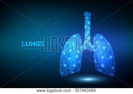 Lungs. Low Polygonal Human Respiratory System Lungs Anatomy. Treatment Of Lung Diseases. Medicine Cu