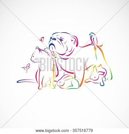 Vector Group Of Pets - Dog, Cat, Bird, Macaw, Chameleon, Rabbit, Butterfly, Humming Bird, Isolated O