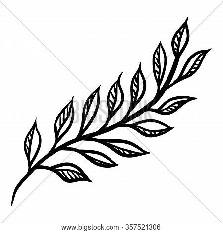 Twig With Leaf Silhouette Stylized For Decoration Design. Floral Ornament. Hand Drawn Vector Natural