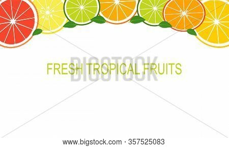 Vector Fresh Slices Tropical Fruits Template Suitable For Banners, Magazines, Websites, Restaurants
