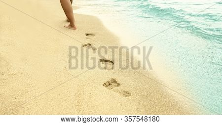 Footprints In The Sand On The Beach Summer