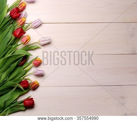 Spring flowers composition on the wooden background.Top view colorful tulips  on a wooden surface. Copy space.