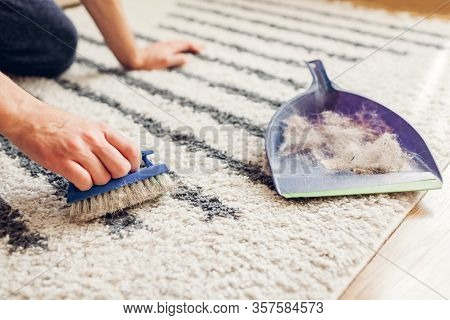 Cleaning Carpet From Cat Hair With Brush At Home. Man Cleans Dirty Rug Puts Animal Fur In Scoop. Hou
