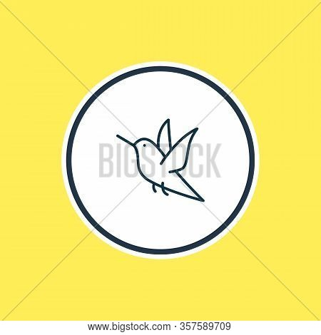 Vector Illustration Of Humming Bird Icon Line. Beautiful Animals Element Also Can Be Used As Colibri