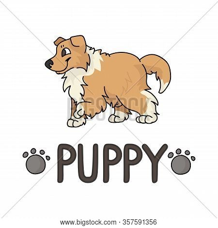 Cute Cartoon Rough Collie Puppy With Text Word And Paw Print Vector Clipart. Pedigree Kennel Doggie
