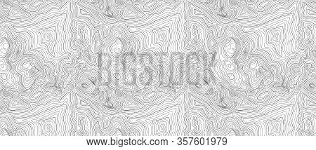 Background Of The Topographic Map. Topographic Map Black Lines, Contour Background.