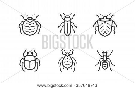 Insects Icon Set. Animals Vector Illustration Isolated On White Background